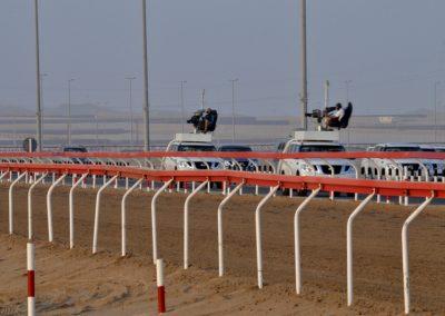 16_CAMEL_RACING_ABU_DHABI_CUSTOMISED